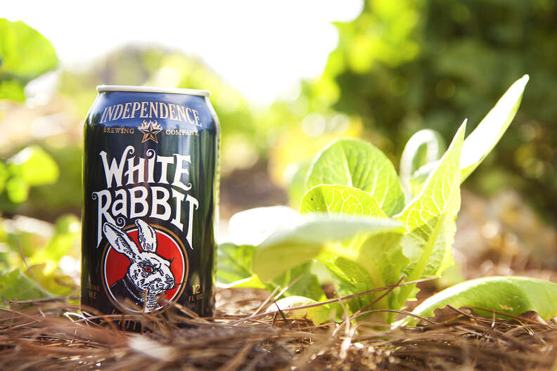 Independence Brewing Co., White Rabbit
