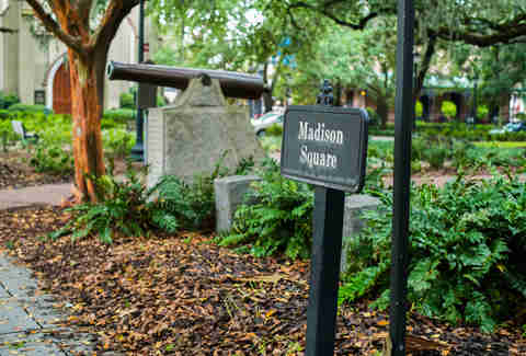 savannah georgia madison square park