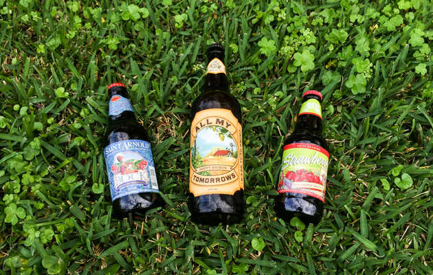 The Best Beers to Drink in New Orleans This Spring