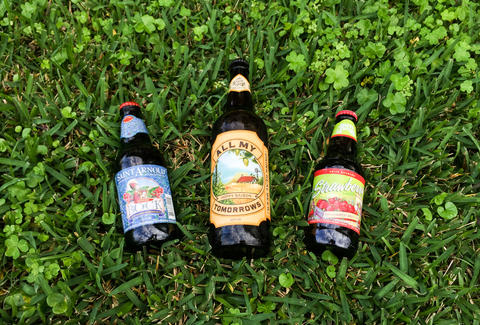 Abita beers on grass