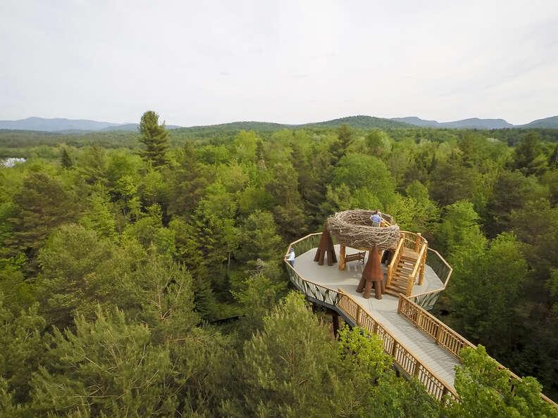 The Wild Center, The Wild Walk, Upstate New York Nature Walks