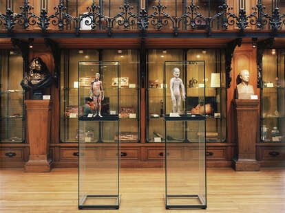 Museum of the History of Medicine paris glass cases