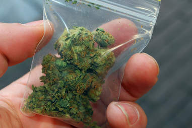 Marijuana in small baggy
