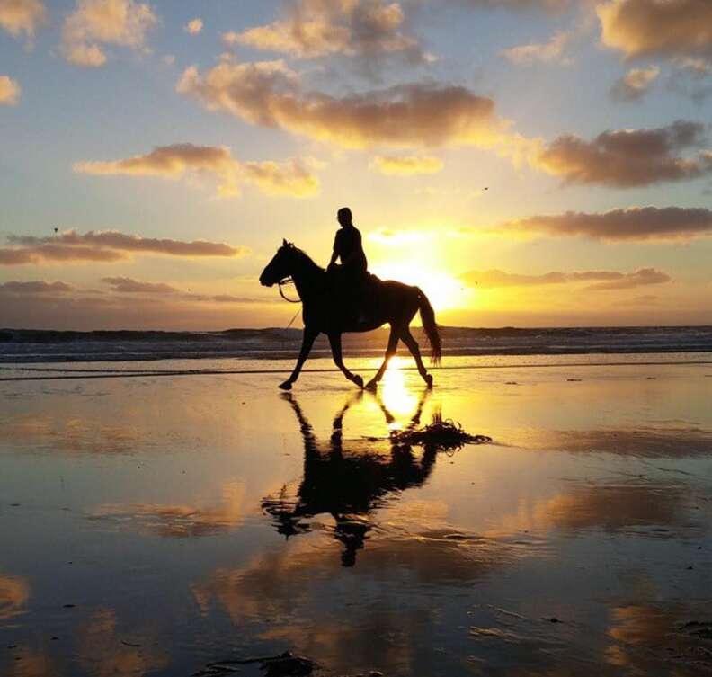 san diego beach rides, beach horseback riding
