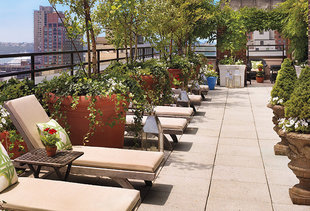 Sky Terrace at the Hudson Hotel