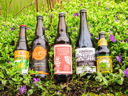 spring beers, beer collection