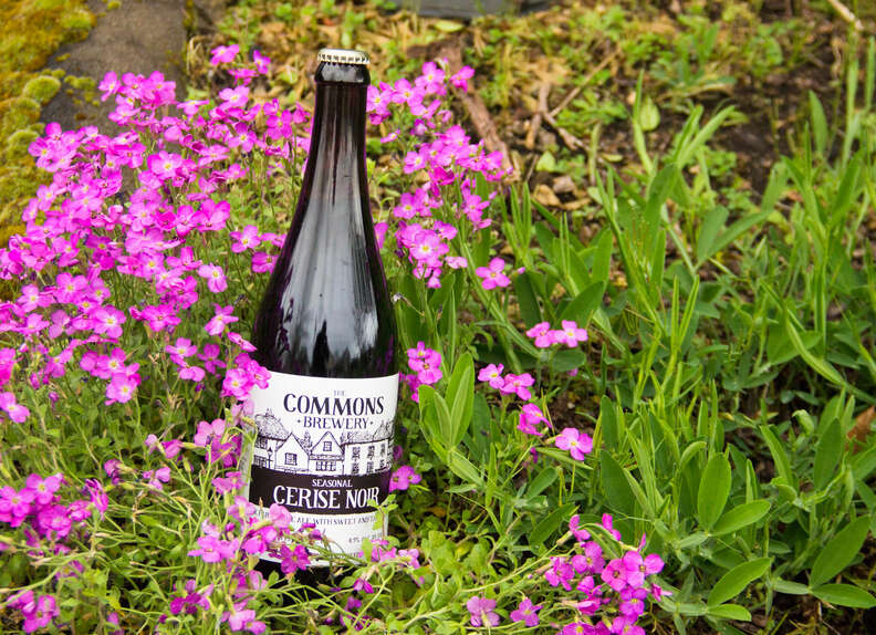 The Commons Brewery Cerise Noir, The Commons Brewery
