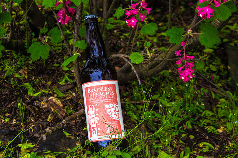 Epic Brewing, Epic Brewing Brainless on Peaches