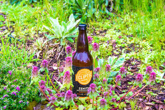 Ecliptic Brewing, Ecliptic Brewing Zenith