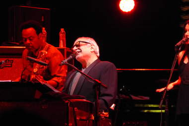 steely dan performing live in concert most boston songs