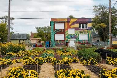 michigan urban farming farm cityscape