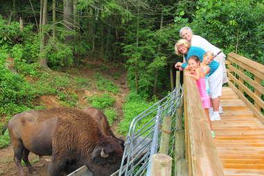 Family staying at Buffalo Creek Vacations