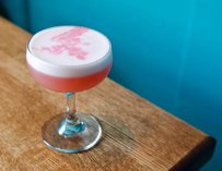 Mezcaleria Las Flores Falconry Demonstrations chicago pink drink blue wall