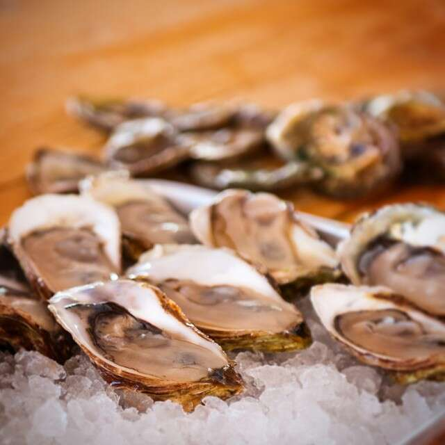 The Tide and Vine Oyster Company