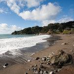 Farallon Islands: A San Francisco, CA Venue.