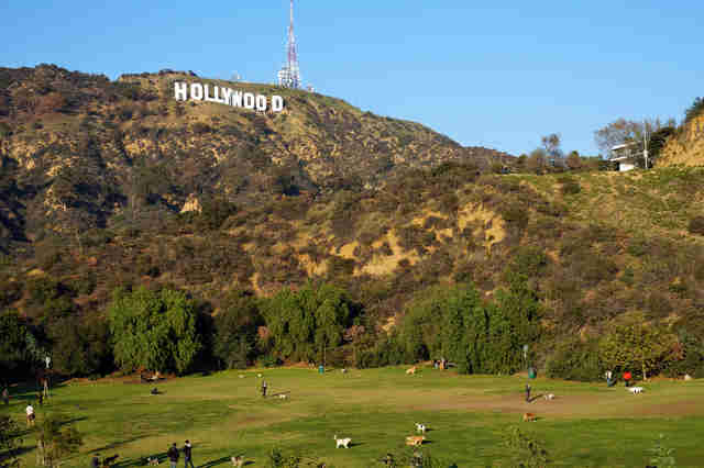 hollywood sign california los angeles