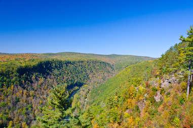 Pine Creek Gorge Pennsylvania