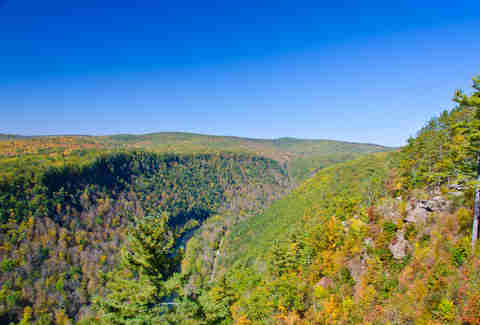 Pine Creek Gorge Pennsylvania