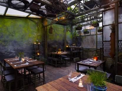 Edi & the Wolf patio green walls industrial rustic thrillist new york
