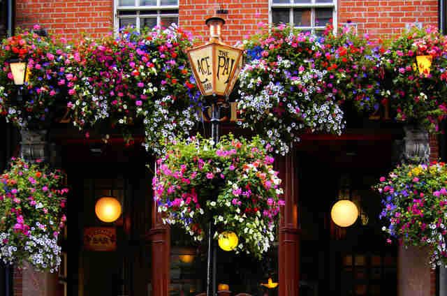The Palace Pub in Dublin