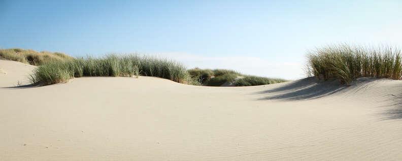 dunes oregon beaches
