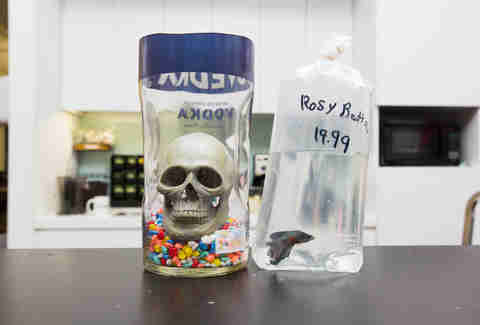 Alcohol Bottle Fish Tank