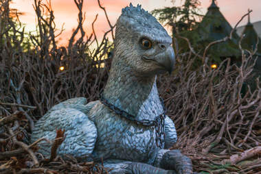 hippogriff, flight of the hippogriff