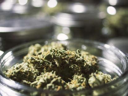 marijuana stored in a jar
