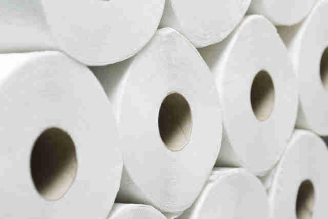 toilet paper, toilet paper roll, toilet paper rolls