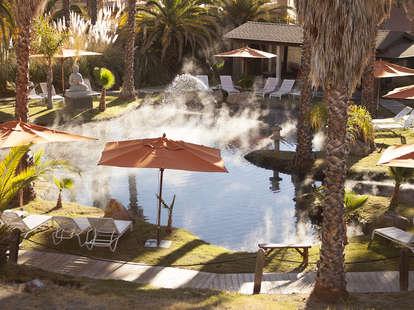buddha pond, san francisco hot springs