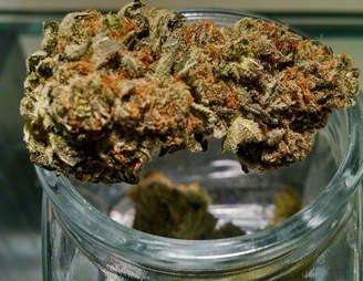 Mandarin OG  Native Roots Aspen marijuana