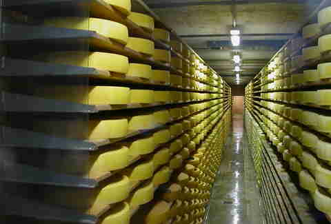 All the Aging Gruyere