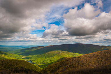 Charlottesville/Central Virginia