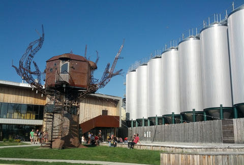 Dogfish brewery