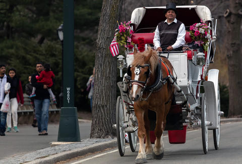 Driving Jobs Nyc >> Nyc Hot Dog Vendor Subway Conductor And Horse Carriage Driver