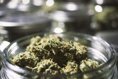 Marijuana cannabis jar