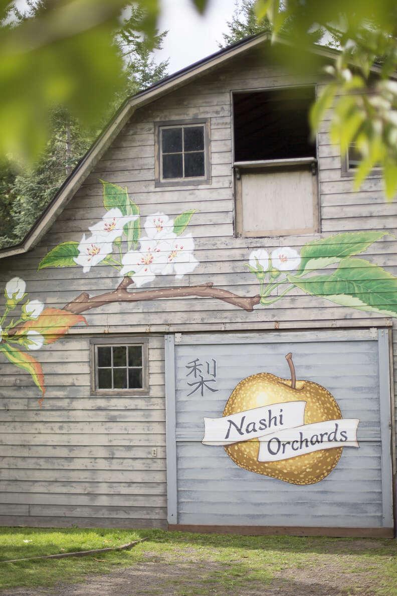Nashi Orchards seattle