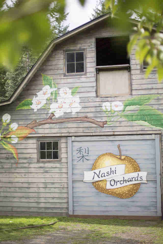 Nashi Orchards seattle