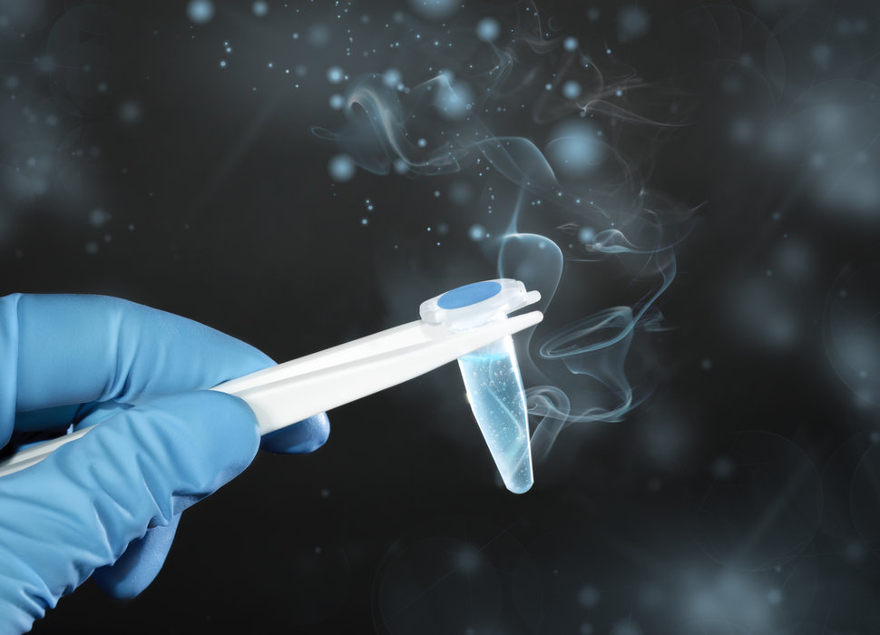 Thawing cryosample sperm