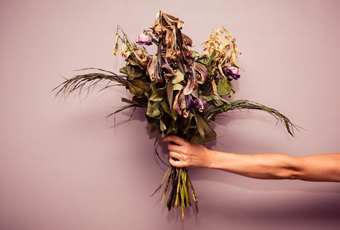 I Don T Buy Flowers And You Shouldn T Either Thrillist