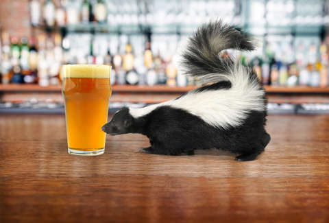 skunk and beer