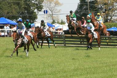 Foxfields Races