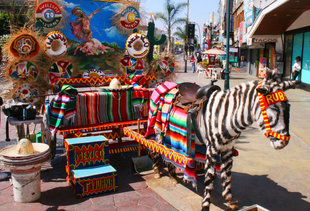 Everything You Need to Know Before Going to Tijuana