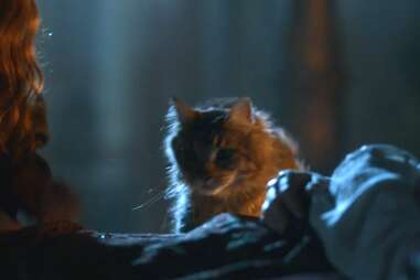 ser pounce game of thrones