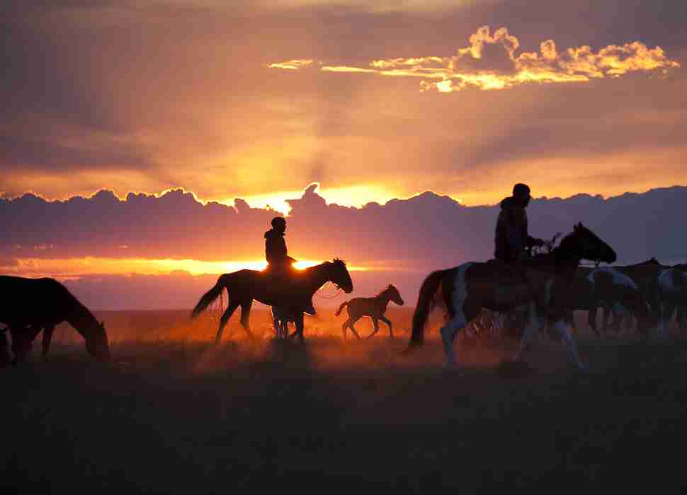 Horses Sunset National Geographic