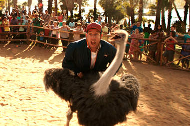 Blended, Adam Sandler