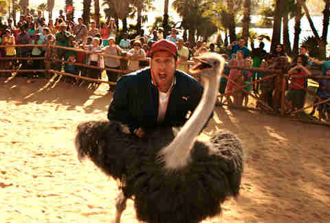 Best Adam Sandler Movies, Ranked: Every Film From Best to ...