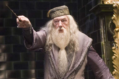 harry potter dumbledore Michael Gambon
