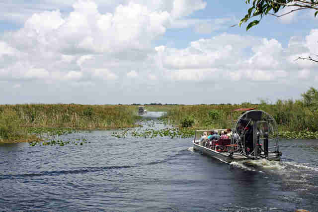 airboat ride in miami