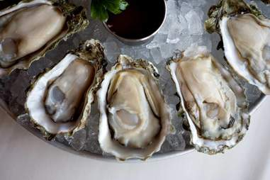 Oysters at Taps